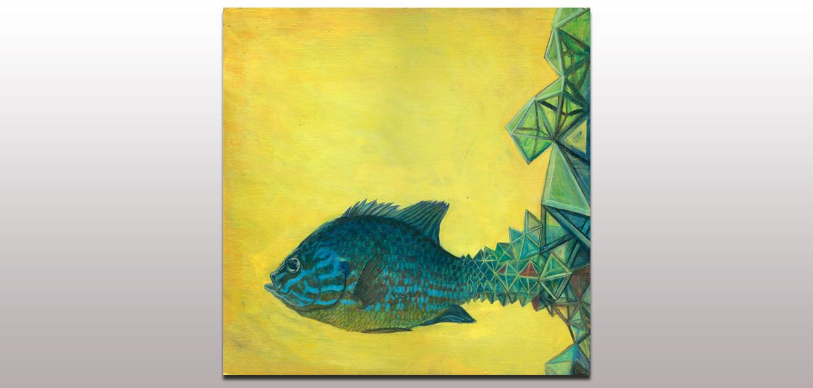 002 Pumpkin Seed Sunfish