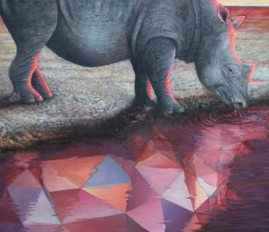 50_Rhino2b-vincentfink